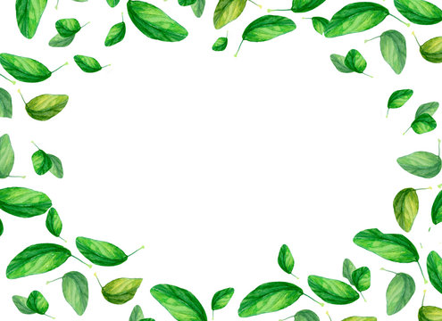 Seamless watercolor frame illustration with green spring leaves