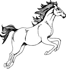 Picture with a galloping horse. Running animal tattoo.