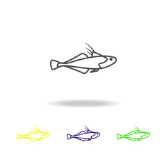 Seafood, bluestreak goby colored icons. Element of asian cuisine illustration. One of the collection icons for websites, web design, mobile app