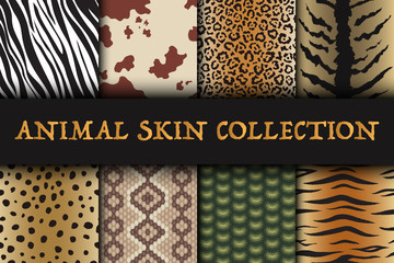 Seamless animal skin patterns set. Safari textile of Giraffe, tiger, zebra, leopard, reptile, cow, snake and jaguar background collection vector illustration.