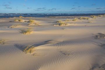Plaża w Słowińskim Parku Narodowym podczas sztormowej pogody.