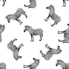Zebra seamless pattern. Wild animal texture. Striped black and white. design trendy fabric texture. Vector illustration isolated on white background.