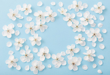 cherry flowers on paper background