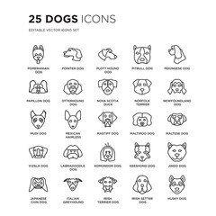 Set of 25 dogs linear icons such as Pomeranian dog, Pointer Plott Hound Pitbull Pekingese Newfoundland dog, vector illustration of trendy icon pack. Line icons with thin line stroke.