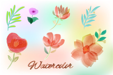 Watercolor elements for your design