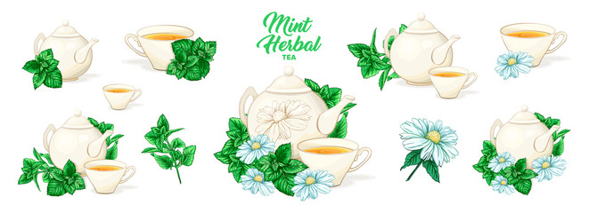 Herbal Tea with Mint in Ceramic Teapot and Tea cup. Clipart Vector Collection. Mint and Green Leaves. Isolated Detailed Herbs Illustration. Marker Hand Drawn Set. Porcelain Service for Restaurant Menu