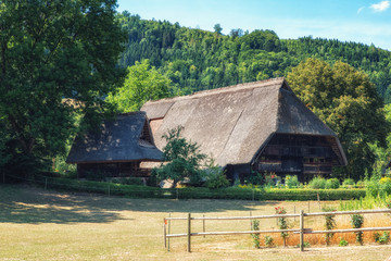 Traditional Black Forest farmstead