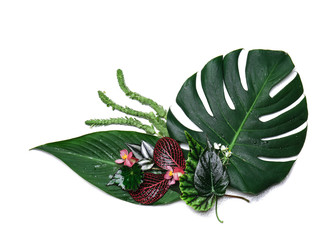 Composition with fresh tropical leaves and flowers on white background