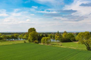 Grünes Feld mit See und Bäumen im Hintergrund