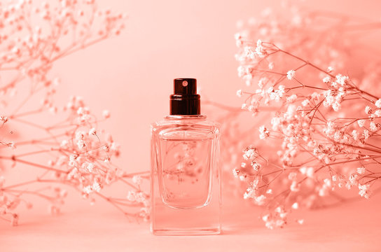 A jar of perfume without a cap with a sprig of gypsophila.