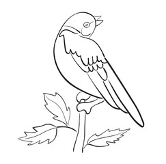 silhouette of vector bird sit on branch