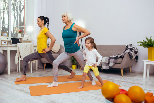 Nice pleasant women doing sports exercises together