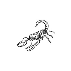 scorpio vector doodle sketch isolated on white background