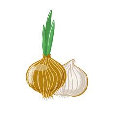 Bulb onion set - whole, half and slice