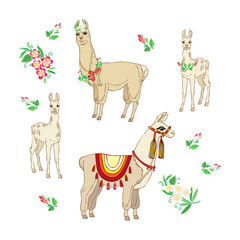Llamas with flowers. Hand drawn seamless pattern