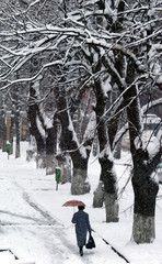 A woman walks under umbrella along a snow-covered street in Russia's southern city of Stavropol.
