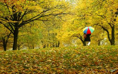 An elderly woman walks with her umbrella in light rain in an autumnal park in Hamburg.