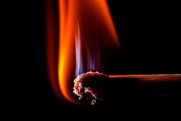 Burning matchstick, macro