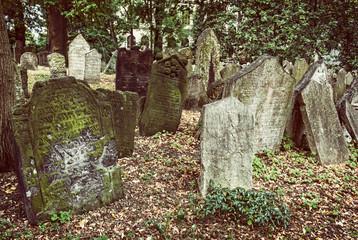 Jewish cemetery in Prague, Czech