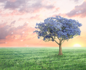 spring fantasy landscape with violet tree and grass field