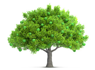 green apple tree isolated 3D illustration