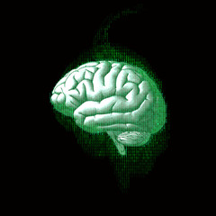 Digital code brain illustration isolated on black BG