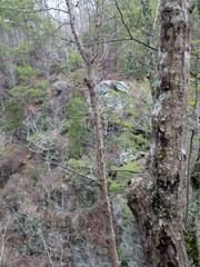 A rock outcropping across the gorge at Salt Creek Falls in the Talladega National Forest in Alabama, USA