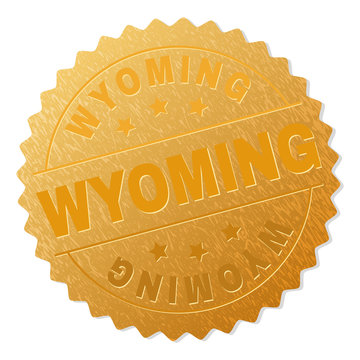 WYOMING gold stamp medallion. Vector golden medal with WYOMING text. Text labels are placed between parallel lines and on circle. Golden area has metallic effect.
