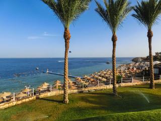 Red sea beach at Egypt, Sharm el-Sheikh