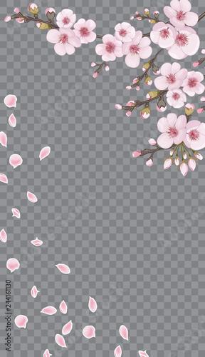 Rose On Transparent Fond Design Element For Textiles Wallpaper