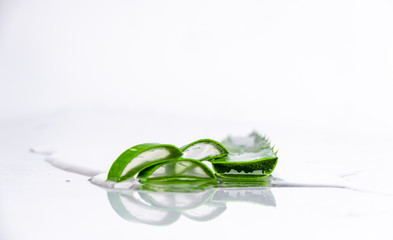 on white background isolated aloe vera leaves and freshly cut leaf slices