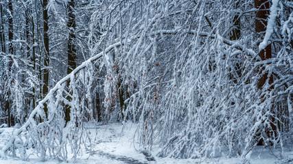 The cold arch - das kalte Portal
