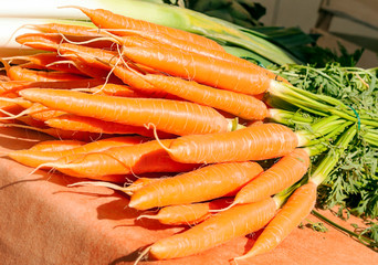 Bunches of carrots in a market stall.