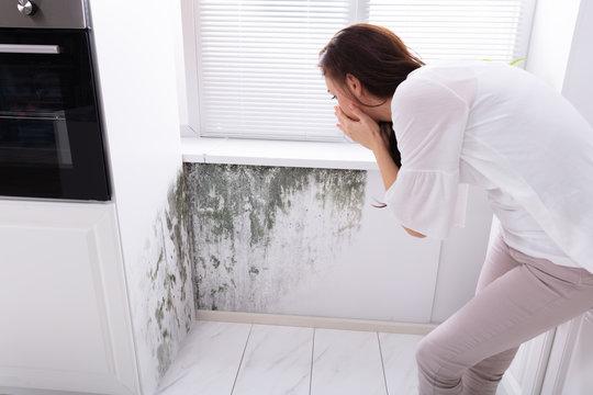 Woman Looking At Mold On Wall