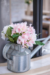 Fototapeta Flower in pot obraz