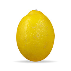 Fresh lemon: whole lemon. Vector illustration.