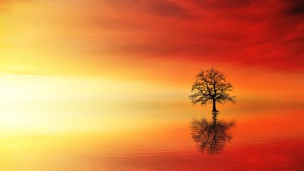 Keuken foto achterwand Rood Landscape Premium Masterpiece