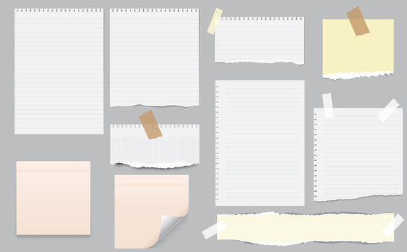 White and colorful note, notebook paper with torn edges stuck on gray background. Pink sheets of note papers, sticky notes