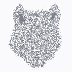 Wolf drawn in detail. Original vector illustration
