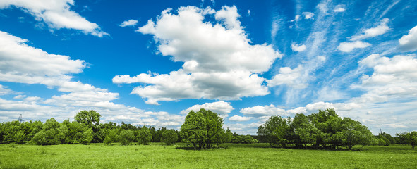 Fototapete - green field with trees and blue sky with clouds Sunny day, beautiful rural landscape, panoramic banner