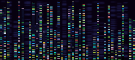 Genomic analysis visualization. Dna genomes sequencing, deoxyribonucleic acid genetic map and genome sequence analyse vector concept