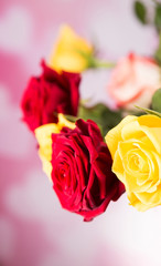 A bouquet of colorful roses for a valentine gift