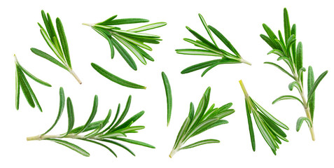 Rosemary twig and leaves isolated on white background with clipping path, collection Wall mural