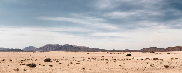 Poster de jardin Desert de sable Panoramic empty desert background with copy space