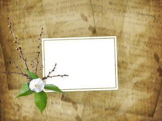 Beautiful delicate bouquet of bindweed and flowering branches with ribbons and bows in the style of scrapbook