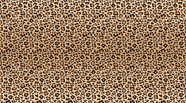 Leopard print pattern. Seamless pattern of leopard skin. Fashionable cheetah fur texture