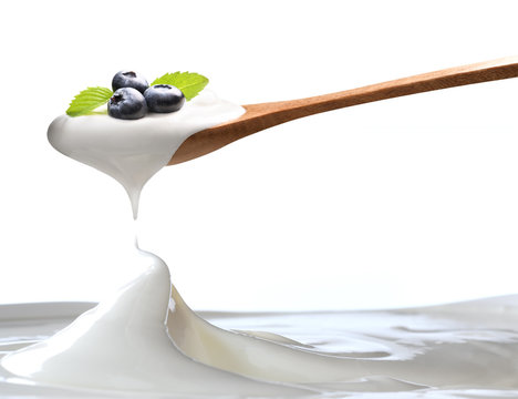 Plain yogurt on a spoon with fresh blueberries on top hanging above of plain yogurt isolated on white background