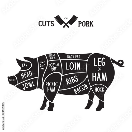 meat cuts - pork  diagrams for butcher shop  scheme of pork  animal  silhouette pork  guide for cutting