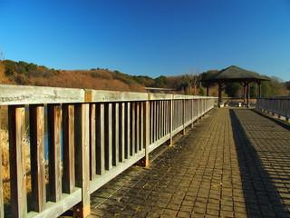 木橋のある公園風景