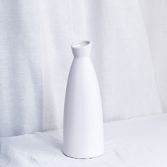 vase on blue background